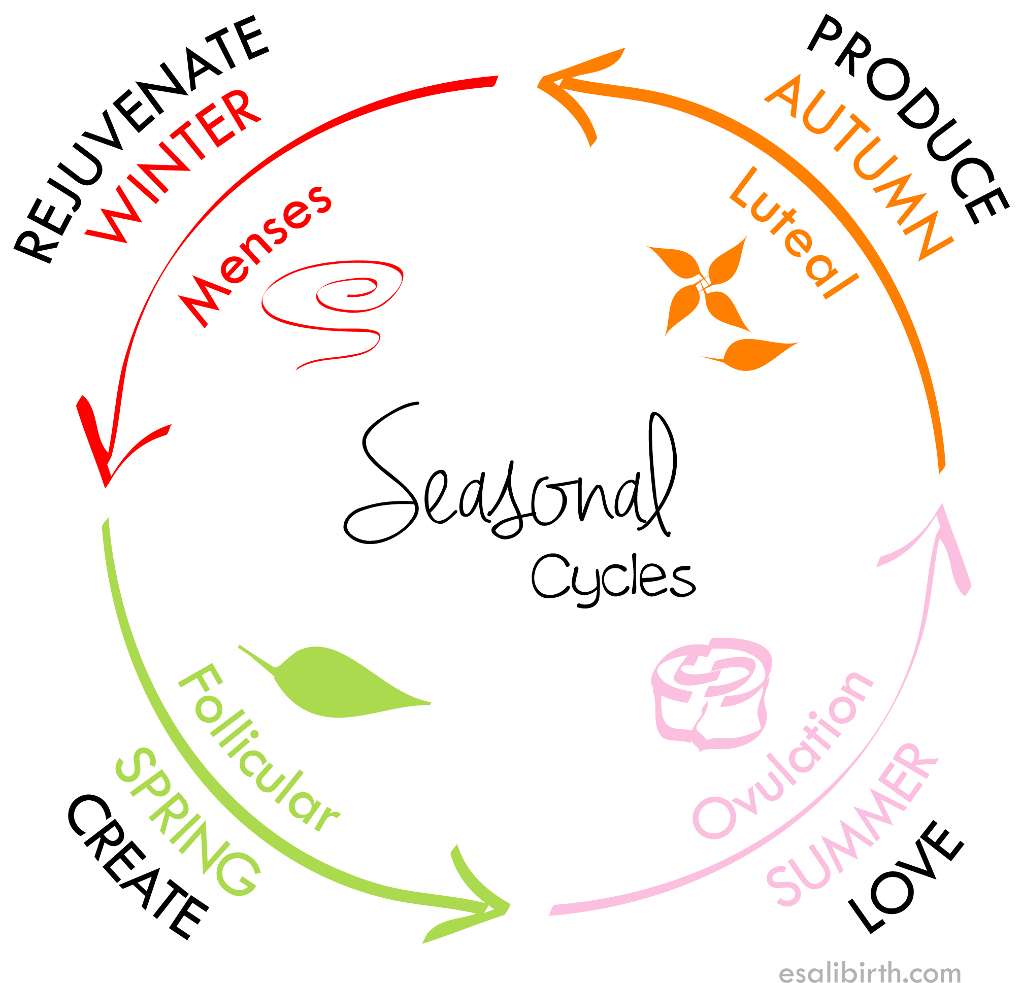 Seasonal Cycle Wheel